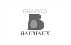 logo_baumaux